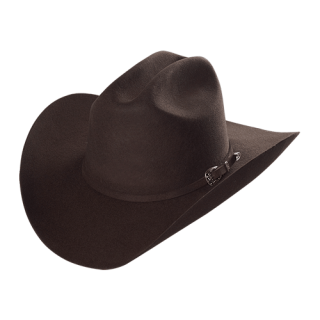 ESTAMPIDA Felt Hats, Joan Sebastian 20X Chocolate