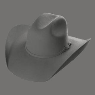 Bull 20X