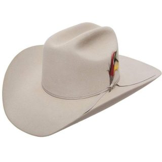 STETSON 6X SilverBelly Roper, Felt Hat. FREE SHIPPING !