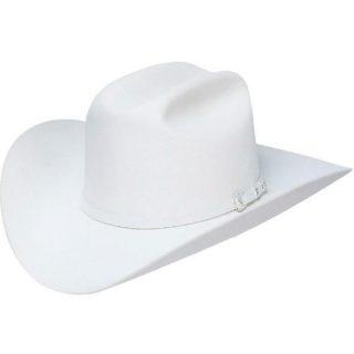 STETSON 10X White Shasta, Felt Hat. FREE SHIPPING !